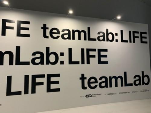 teamlab21